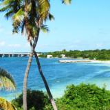 11 redenen waarom Florida de ideale vakantiebestemming is