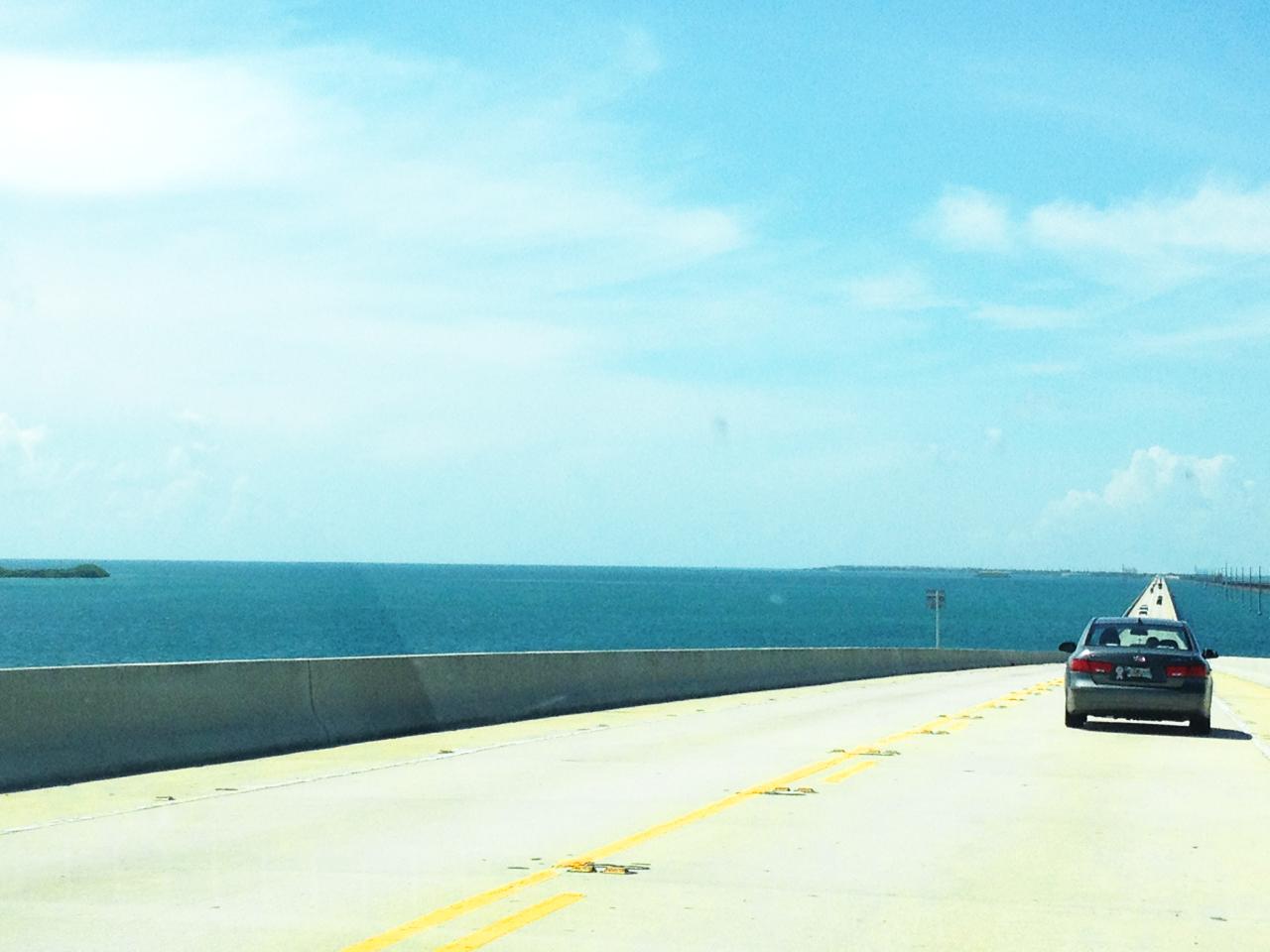 wegen in Florida de ideale vakantiebestemming