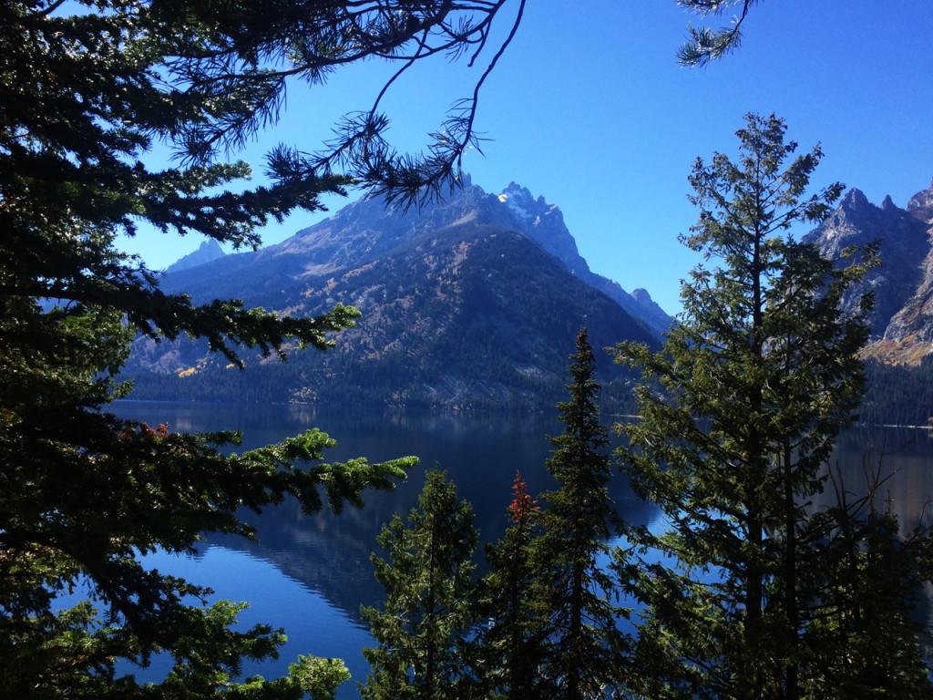 jenny-lake-overlook-grand-teton