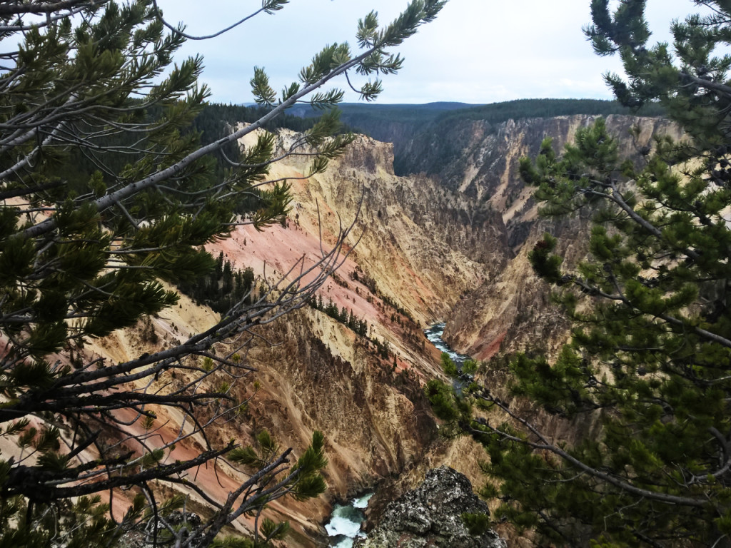 canyon-in-yellowstone