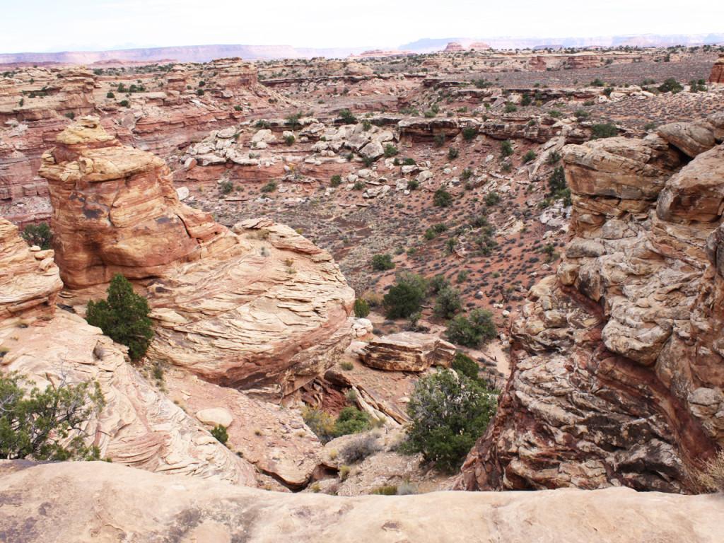 canyonlands-needles-uitzicht