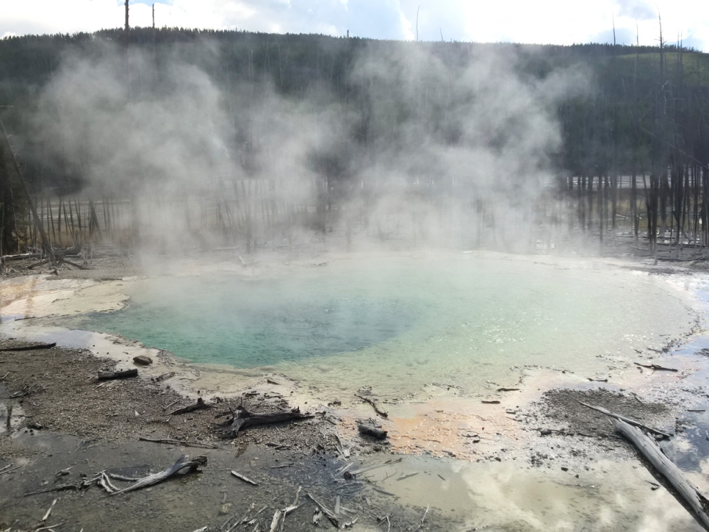 norris-geyser-basin-yellowstone