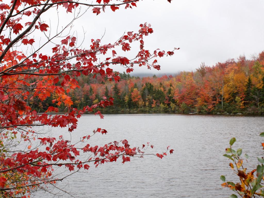 Herfstkleuren-New-England