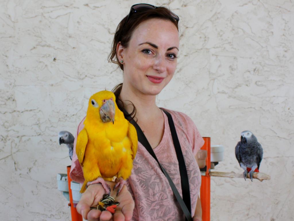 Bianca-Amerika-blog-Pigeon-Forge-Parrot-Mountain