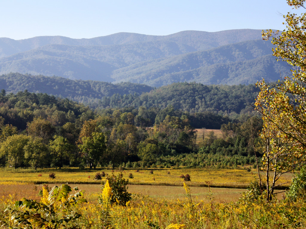 Great-Smoky-Mountains-Cades-Cove