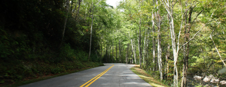 Great-Smoky-Mountains-road-trip--Amerika
