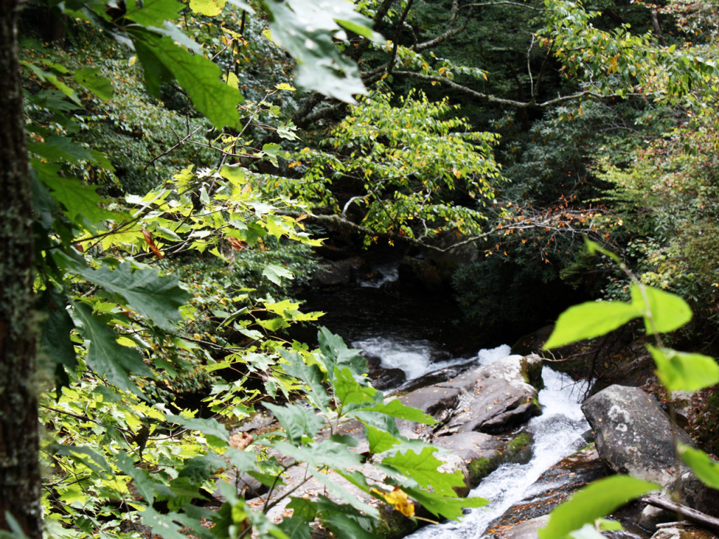 Walk-to-Lynn-Falls-Great-Smoky-Mountains