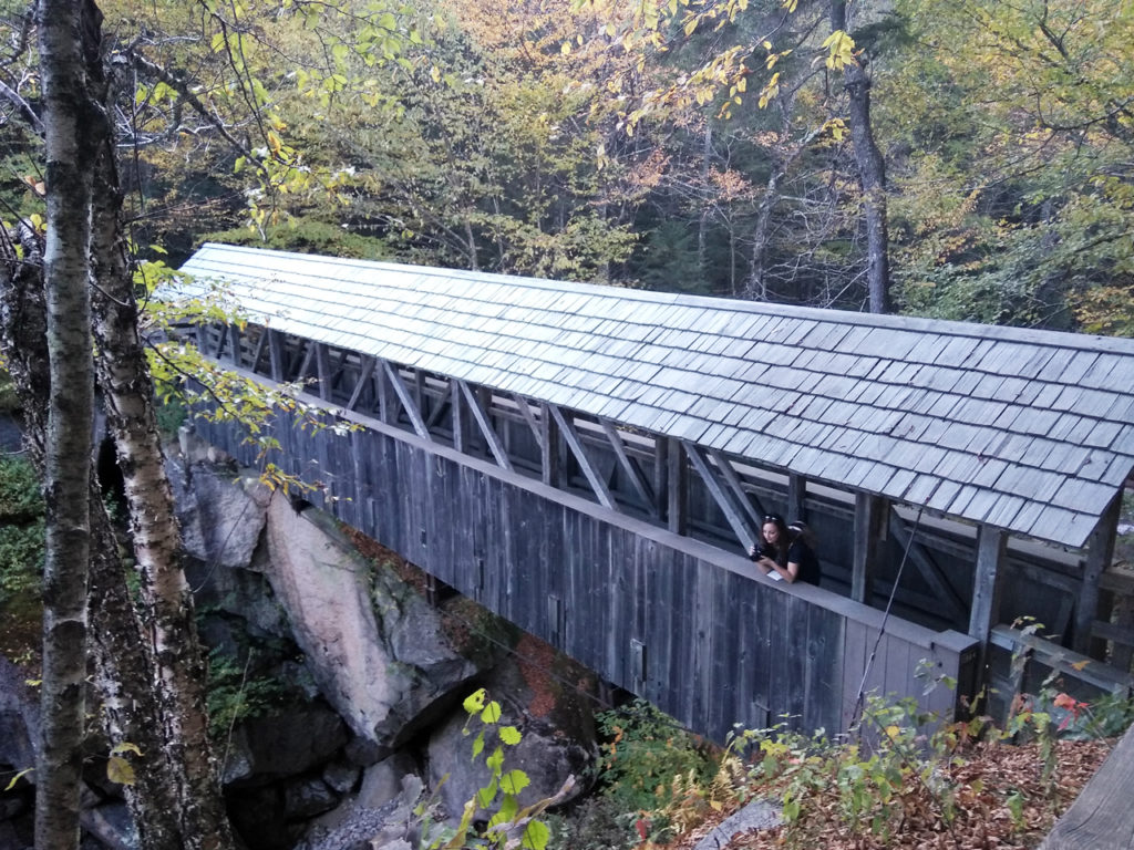 Bridge-in-Flume-Gorge