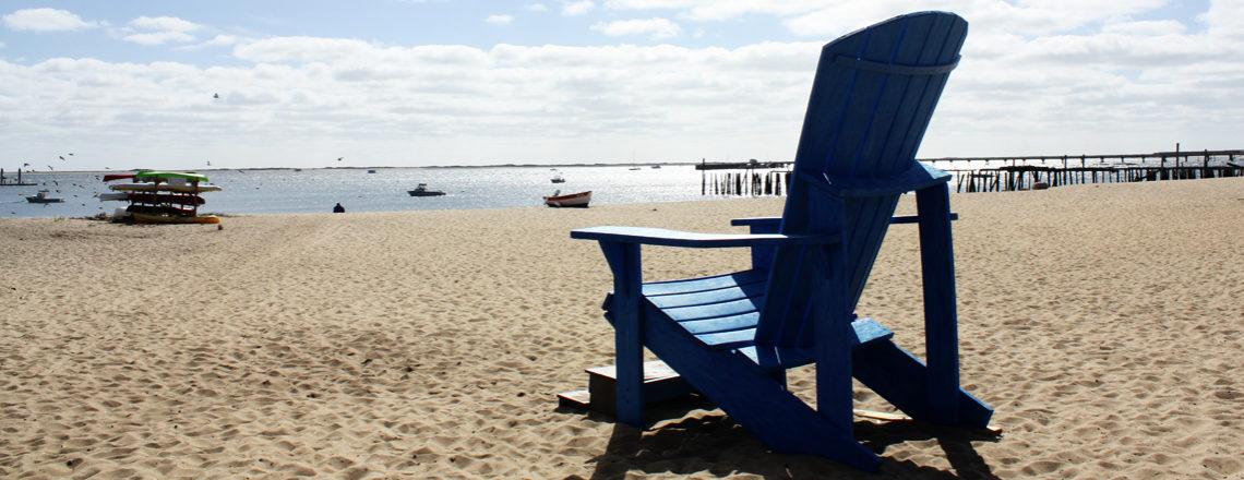 Rondje New York: Amerika reis dag 28: Provincetown en een Walvistocht?