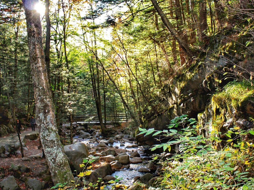 Flume Gorge bos Amerika wandelen