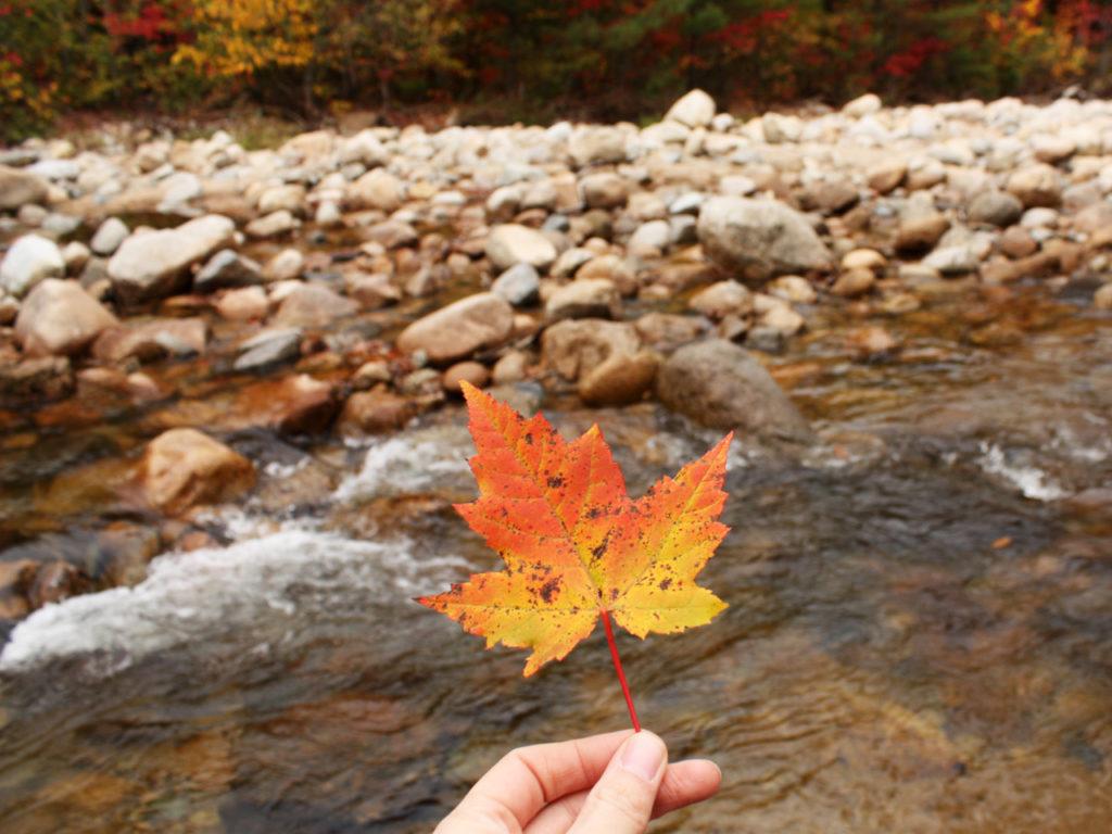 New-England-herfst