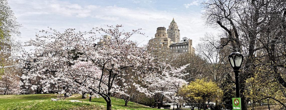 Lente in New York