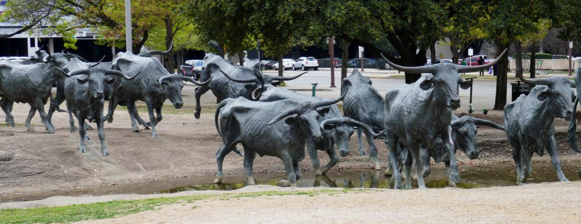 Van New York naar Texas: Amerika reis dag 11: Indrukwekkend Dallas