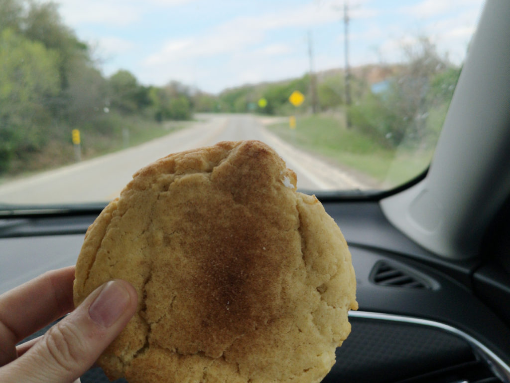 koekje-snickerdoodle