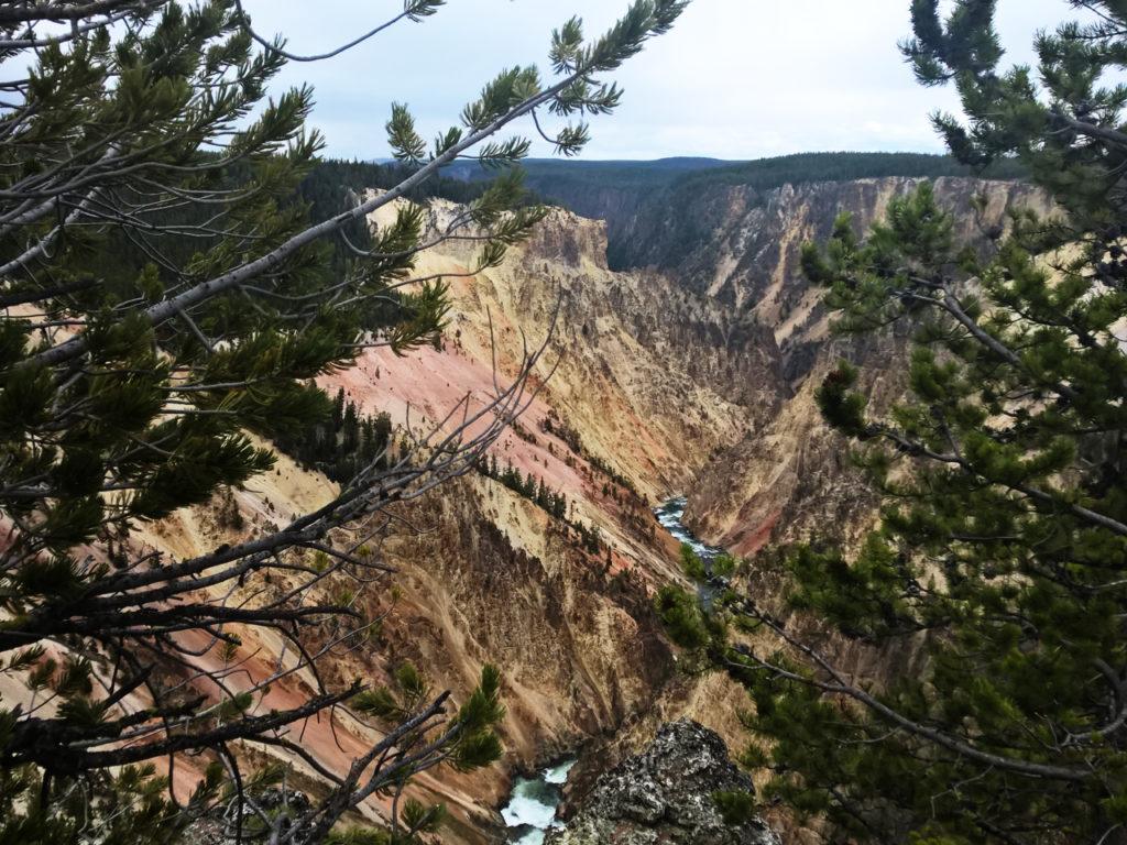 Canyon-in-Yellowstone
