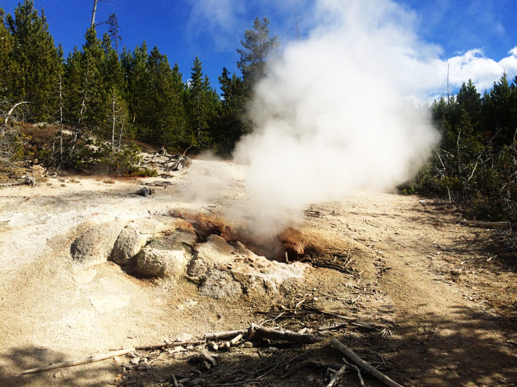 Geyser-Norris Yellowstone National Park in Amerika
