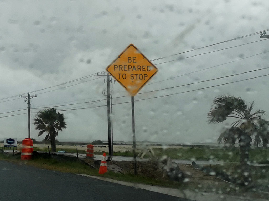 Regenachtig-in-Amerika-palmbomen