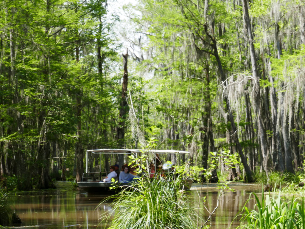 boats-honey-island-swamp-tour