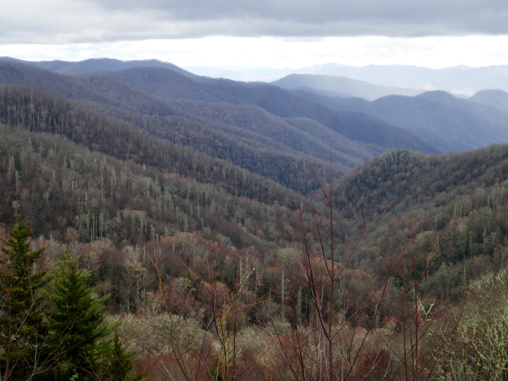 Great-Smoky-mountains-view-