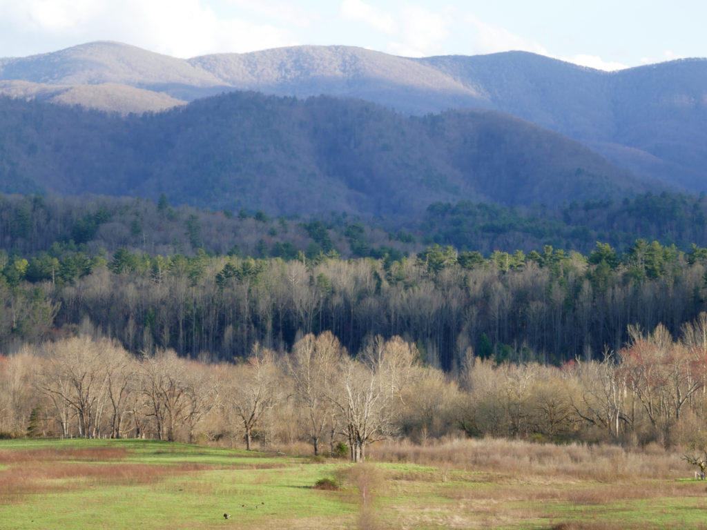 Cades-Cove-in-Great-Smoky-Mountains