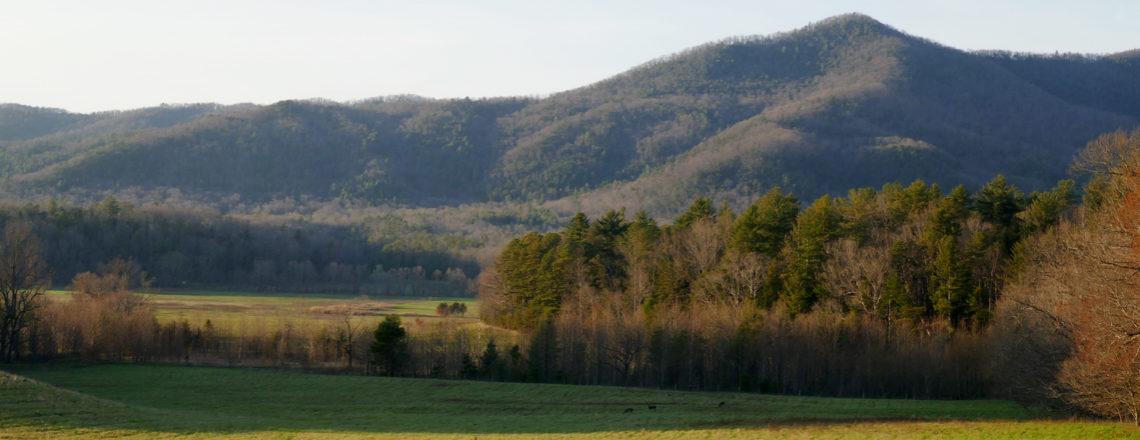 Van New York naar Texas: Amerika reis dag 24: In de Great Smoky Mountains