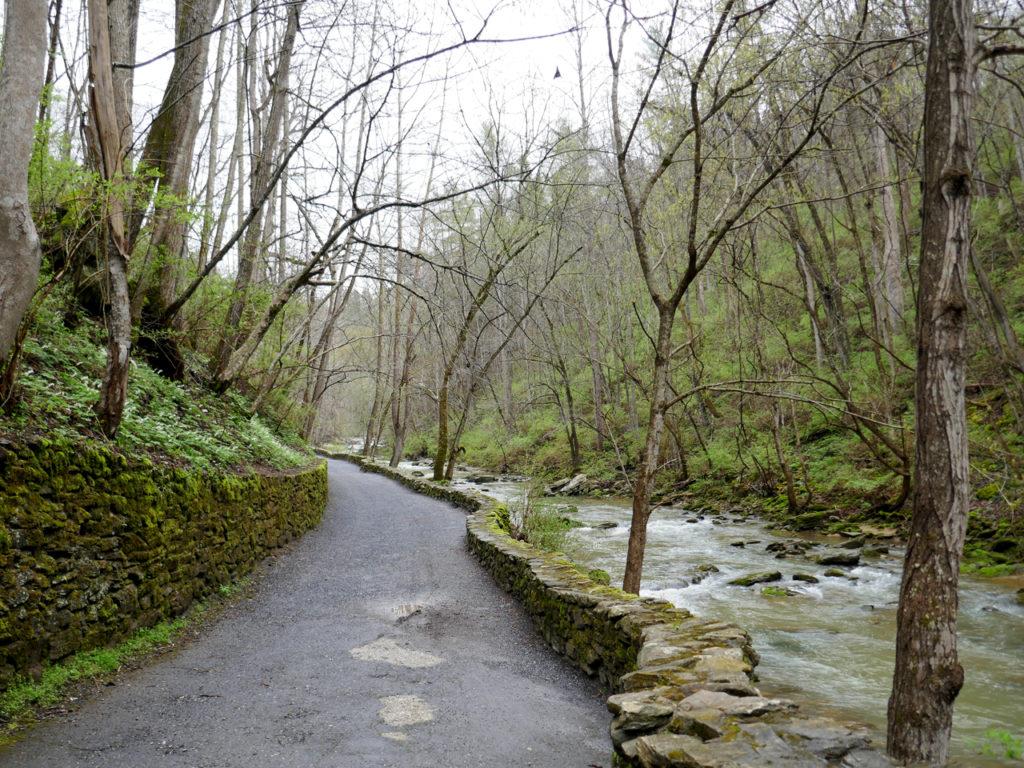 Natural Bridge State Park in Amerika wandeling