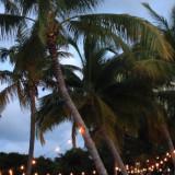 Het verhaal achter de foto: drankjes en orkanen in Florida