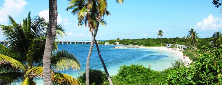 Florida de ideale vakantiebestemming